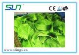 2017 imbracatura della tessitura del poliestere di buona qualità 2t con il certificato del Ce