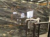 Perth Blue Marble baldosas pulidas losas&+encimera