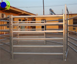 Ограждать скотного двора фермы популярный используемый легкий устанавливая