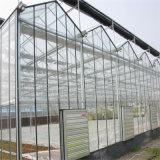 溝によって接続される温室のHydroponic陰のネットのプラスチックフィルムの温室