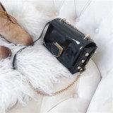 Signora Handbag dell'unità di elaborazione del sacchetto di spalla del messaggero della serratura della catena di disegno di modo di promozioni