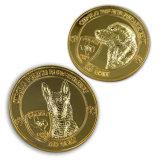 латунные античные воискаа золота 3D бросают вызов монетка