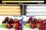 Garantie 3Oui Petite taille Super Bright panneau LED 8 W Downlight encastré découpe de 2,5 pouces 70mm
