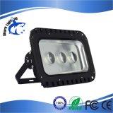Projekt-Cer Standard150w im Freien Bridgelux wasserdichtes Meanwell PFEILER LED Flut-Licht