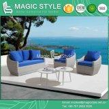Il sofà di vimini del patio ha impostato con rattan del sofà del giardino dell'ammortizzatore il singolo che tesse il nuovo sofà di vimini moderno di tessitura di vimini del sofà del sofà 2-Seat con la Tabella di tè di vimini della Tabella di tè