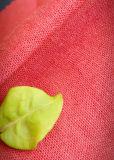 Tela per i pantaloni e pantaloni, tela dell'indumento, tessuto di tela inferiore, pantaloni degli uomini, donne pannello esterno, camicia, primavera ed estate, tessuto della Tabella