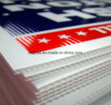 Het Holle Plastic Sheet/PP GolfBlad Sheet/PP van pp voor de Druk van het Scherm