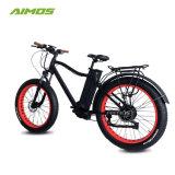 Bafang 750Wモーターを搭載する浜のEbikeの雪の電気バイク