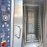 Tellersegment des beste Verkaufs-Drehzahnstangen-Gas-Ofen-32 im Fabrik-Preis