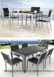 Wicker патио сада/мебель ротанга обедая комплект (TG-608)