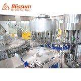Volle automatische Plastikflasche reinigte Produktionszweig des Wasser-3 in-1