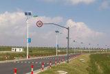 25W LED Solarstraßenbeleuchtung mit 6m Pole (DZS-06-25W)