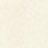 Baldosa cerámica de interior del uso 600X600 de la fabricación de Shg-66A0401q