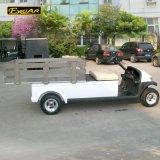 Carro de la compañia de electricidad de 2 pasajeros con el mini carro del cargo
