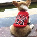 Cão médio pequeno da equipa de futebol do basquetebol o grande ostenta a roupa