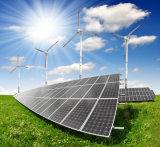 El panel monocristalino de la energía solar de 275 vatios