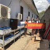 Installeer Steun 20kw van het Systeem van de ZonneMacht van het Net voor Huis en het Gebruik van het Landbouwbedrijf