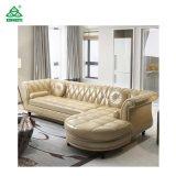 sofá do projeto do couro da forma