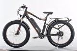 Elektrisches Gebirgsfahrrad/fettes Gummireifen-Fahrrad/Schnee-elektrisches Fahrrad
