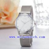 Uhr passen Edelstahl-Dame-Uhren an (WY-027B)