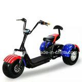 Triciclo eléctrico baratos, caliente la venta de Energía Solar Scooter