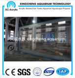 Hohes Transparent-Acrylblatt-Aquarium