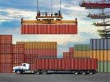 Trasporto di mare di logistica di trasporto da Guaangdong a Dammam