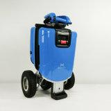 공장 전기 스쿠터, 도시 전기 모터바이크를 균형을 잡아 지능적인 9개 인치 3 바퀴 각자!