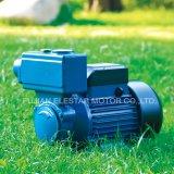 Novo design da bomba de água periférica com aprovado pela CE (KF)