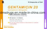 Injection de gentamicine de médecine de Westren (sulfate de gentamicine) Westren Pharma pour l'être humain