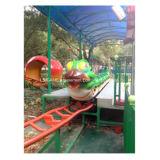 遊園地のためのフルーツのワームのコースターの子供の乗車