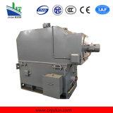 motore a corrente alternata Trifase ad alta tensione di raffreddamento Air-Air di serie di 6kv/10kv Ykk Ykk6301-6-1120kw