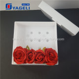 Rectángulo de acrílico impermeable de la flor con 25 rosas