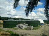 Pianta del biogas dei reattori di 5*2600 M3 Cstr