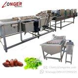 De automatische Data die van de Aardappel van de Tomaat Drogend Fruit en Plantaardige Wasmachine schoonmaken