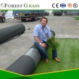 Spitzenqualitätssynthetisches Gras für im Freien Handelsanwendung