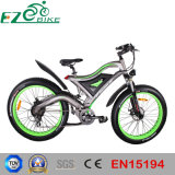 Pneu de graisse en aluminium avec ce vélo de montagne électrique FR15194