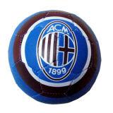 Fußball (XCB071211-008)