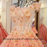Os serviços incluem wedding Lace Up Volta Appliqued mangas curtas Noite Quinceanera Dress