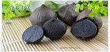 Produits noirs populaires d'ail de la fermentation