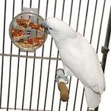 Fornecedor de China da gaiola de pássaro do metal da parte superior lisa