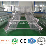 Sistema automático da limpeza do estrume da fábrica da gaiola da galinha do equipamento da exploração avícola
