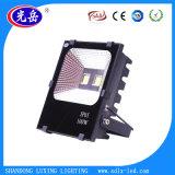 Epistar 칩 지적인 운전사를 가진 30W/50W/100W/150W/200W/250W LED 투광램프