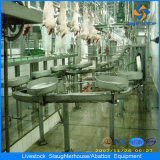 Complete Automatic Pig Slaughter Plant