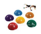 Осуществлять шарик\спортзал шарики (BP-GB009)