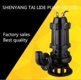 최신 판매 고품질 Qw 자동적인 활동적인 잠수할 수 있는 전기 하수 오물 펌프