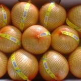 يصدر معيار - نوعية من طازج عسل [بوملو]