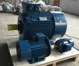 (IE2, GB3) motores asincrónicos trifásicos de la eficacia alta Ye2