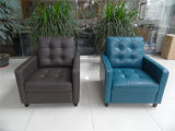 Canapé en cuir véritable de salon (C456)