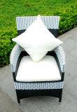 Rotin de meubles de jardin de bonne qualité (SC-B8849-BB)